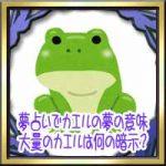 夢占いでカエルの夢の意味!大量のカエルや大きいのは何の暗示?