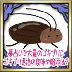 夢占いで大量のゴキブリにゴキブリ退治の意味や暗示は?