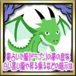 夢占いで龍(ドラゴン)の夢の意味!白い黒い龍や昇る乗るなどの暗示は