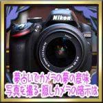 夢占いでカメラの夢の意味!写真を撮る・監視や隠しカメラの暗示は?