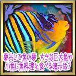 夢占いで魚の夢!大きな巨大魚や小魚に魚料理を食べる暗示は?