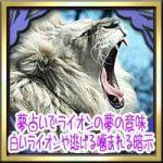 夢占いでライオンの夢の意味!白いライオンや逃げる噛まれる暗示は?