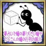 夢占いで蟻(アリ)の夢!大きい蟻やシロアリ・たくさんの蟻の行列の暗示
